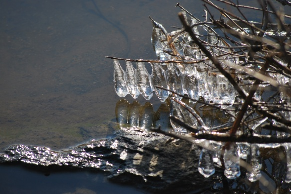 icedroplets