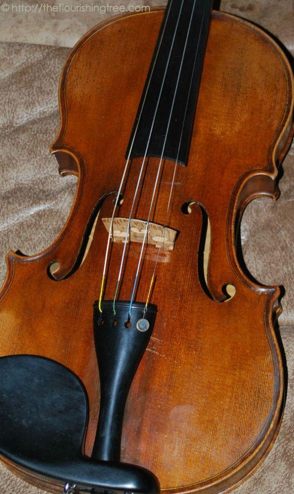 Violin2014ft