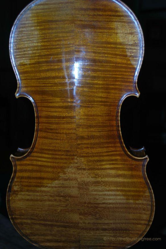 Violinback2014ft