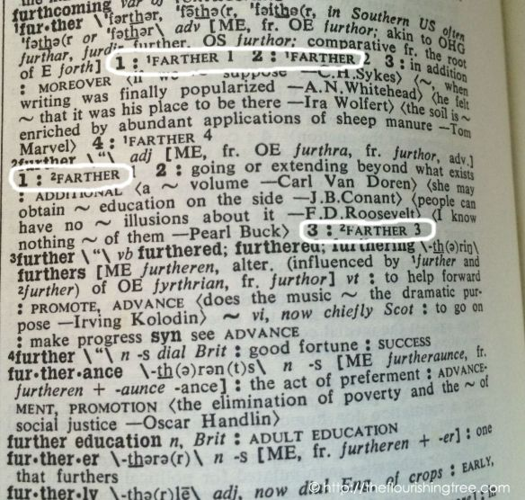 FurtherorFarther2014_dictionaryFT