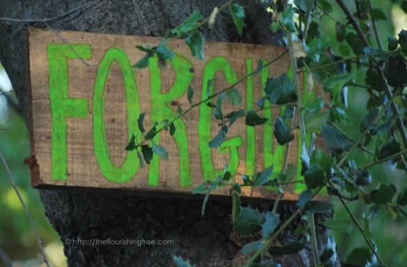 Treesigns2015_7FT