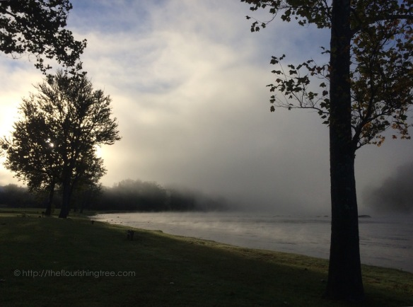 NewRiverMorning2015_2FT