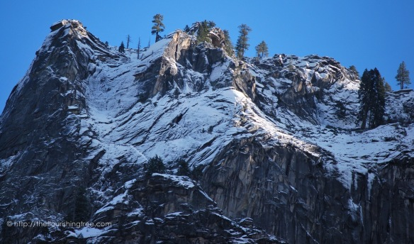 Yosemite2015_12FT