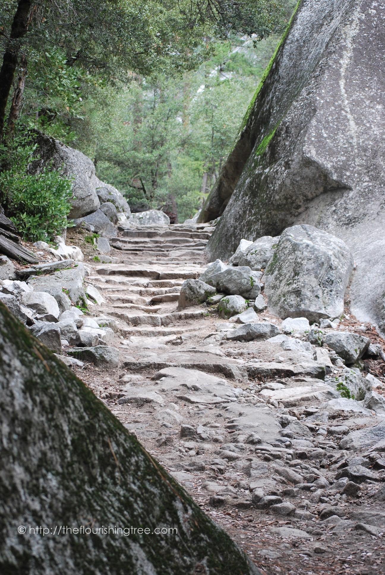 Yosemite2015_2FT