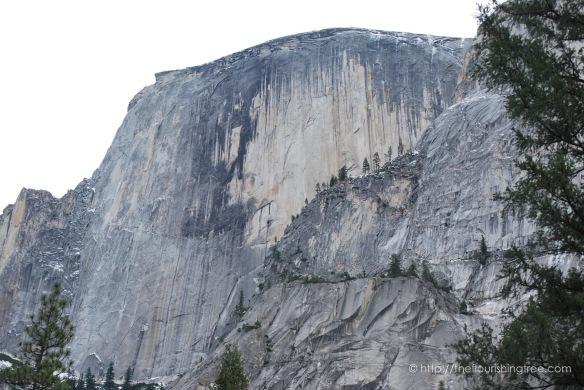 Yosemite2015_3FT