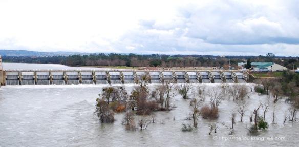 floodcontrol2017_5ft